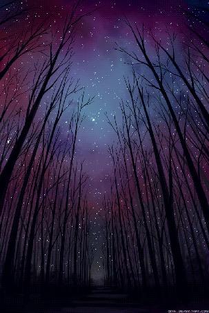 Анимация Домик в магическом освещении в ночном лесу (© zmeiy), добавлено: 22.06.2015 00:28