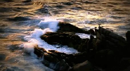 Анимация Морские волны бьются о камни на берегу (© Natko), добавлено: 23.06.2015 12:12
