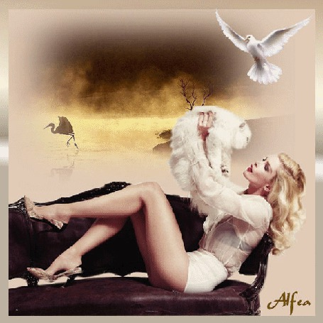 Анимация Девушка сидит на диванчике с белой кошкой в руках на фоне аиста и голубя / Alfea/
