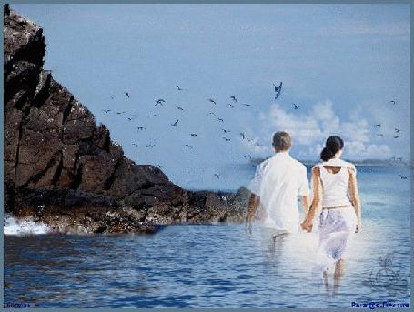 Анимация Влюбленная парочка на фоне моря, скал и чаек / Рыжая Бестия/