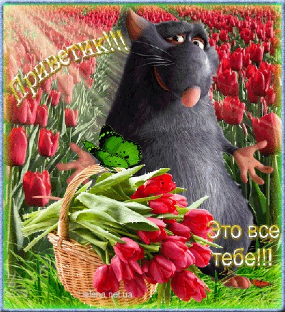 Анимация Крысенок в поле с тюльпанами на фоне корзинки с цветами и бабочки / Приветик, Это все тебе / Helena net ua/ (© qalina), добавлено: 25.06.2015 22:58