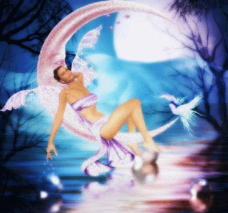 Анимация Девушка на фоне луны с голубем