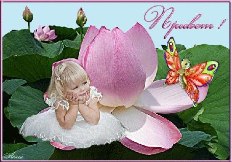 Анимация Девочка дюймовочка сидит в цветке рядом с бабочкой / Привет/ (© qalina), добавлено: 25.06.2015 23:17