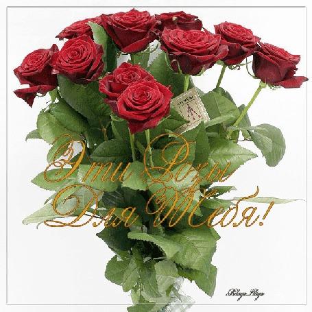 Анимация Букет красных роз / Эти розы для тебя/ (© qalina), добавлено: 26.06.2015 10:48