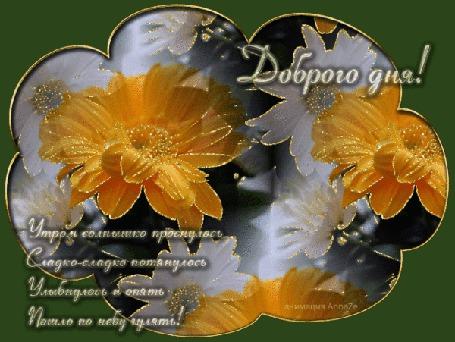 Анимация Цветы в рамке / Доброго дня / Утром солнышко проснулось Сладко-сладко потянулось Улыбнулось и опять Пошло по небу гулять/ (© qalina), добавлено: 27.06.2015 11:16