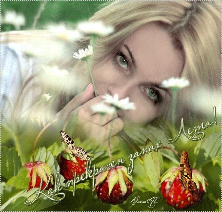 Анимация Ясно-глазая блондинка лежит на траве среди ромашек, земляники и бабочек (Прекрасен запах Лета!) Ольга П (© Natalika), добавлено: 29.06.2015 07:48