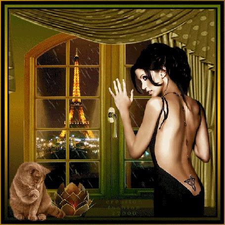 Анимация Гламурная девушка с оголенной спиной и с тату смотрит в окно на фоне Кот, лампа и ночной Париж / Greation fashion 27000/
