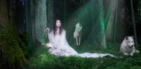 Анимация Девушка сидит у деревьев в лесу, глядя на волшебное свечение, в окружении белых волков (© Bezchyfstv), добавлено: 01.07.2015 21:29