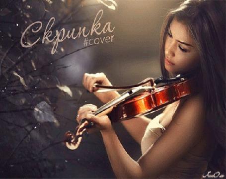 Анимация Красивая девушка играет на скрипке на фоне деревьев (Скрипка Cover), Assol (© qalina), добавлено: 02.07.2015 18:13