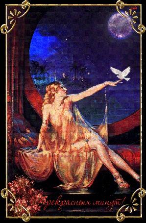 Анимация Девушка на фоне ночного неба и луны с голубем на руке, Leila, (Прекрасных минут)