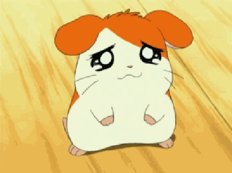 Анимация Хомячок Таро / Taro из аниме Tottoko Hamutarou / Тотоко Хамутаро