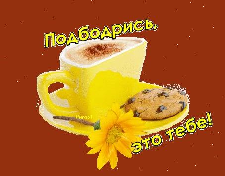 Анимация Чашечка кофе с печеньем на фоне цветка / Подбодрись, это тебе. Инга 61 (© qalina), добавлено: 04.07.2015 10:00