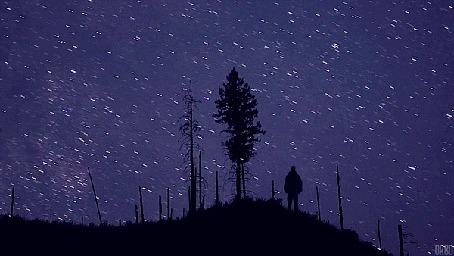 Анимация Мужчина смотрит на ночное небо в звездах