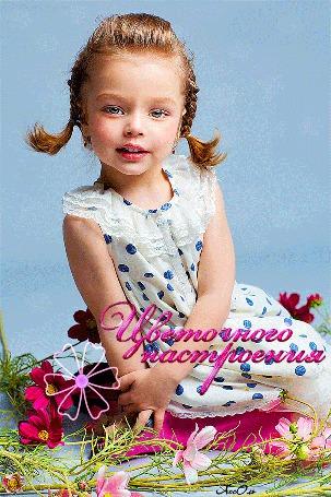 Анимация Милая девочка в платье в горошек сидит в цветах космеи на голубом фоне (Цветочного настроения) АссОль