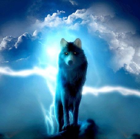 Анимация Волк стоит на горе на фоне сверкающих молний (© Angelique), добавлено: 07.07.2015 12:54