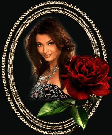 Анимация Индийская фотомодель и актриса Айшвария Рай / Aishwarya Rai в золотой рамочке на фоне красной розы
