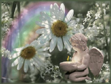 Анимация Фигурка ангелочка, держащего в руках подсвечник с огнем, на фоне полевые цветы и радуга