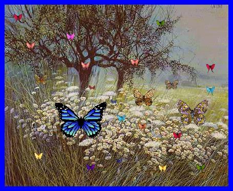 Анимация Бабочки, цветы, деревья, природа (© qalina), добавлено: 09.07.2015 20:30