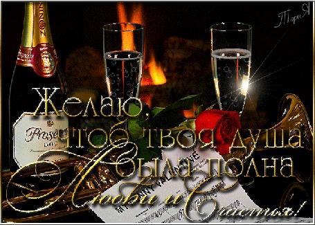 Анимация Бутылка шампанского и бокалы с шампанским на фоне розы (Желаю, чтоб твоя душа была полна любви и счастья), ТориЯ