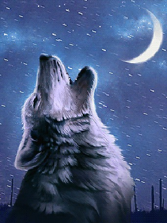 Анимация Волк воет на фоне неба и луны