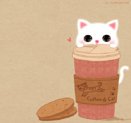 Анимация Котенок сидит за стаканом с кофе, (coffee and cat / кофе и кошка)