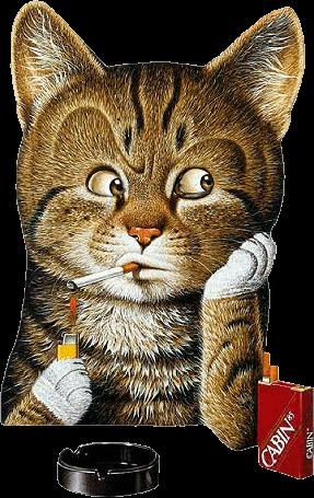 Анимация Курящий кот (CABIN)