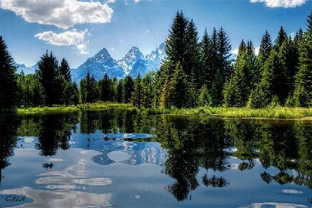 Анимация Лес, горы, плывущие в небе облака отражаются в прозрачной воде озера, GALA