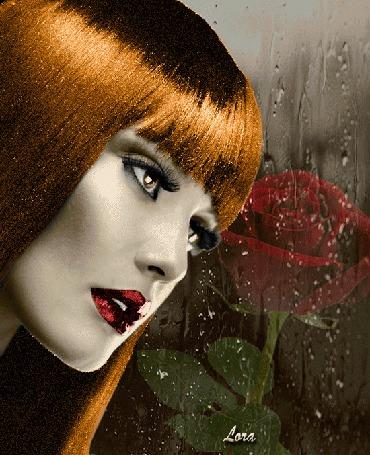 Анимация Девушка на фоне розы, Лора