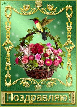 Анимация Корзинка с цветами и птичкой колибри (Поздравляю!), ЗБ