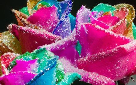 Анимация Переливающиеся цветные розы (© zmeiy), добавлено: 15.07.2015 17:34