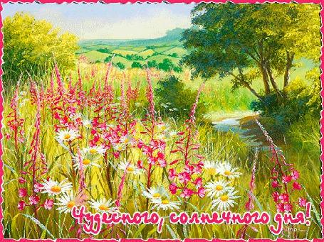 Анимация Поляна с цветами на фоне голубого неба (Чудесного, солнечного дня!) (© qalina), добавлено: 18.07.2015 14:08