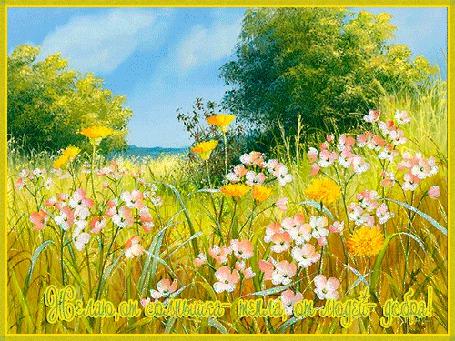 Анимация Цветочная поляна на фоне голубого неба (Желаю, от солнышка- тепла, от людей добра) (© qalina), добавлено: 18.07.2015 14:10