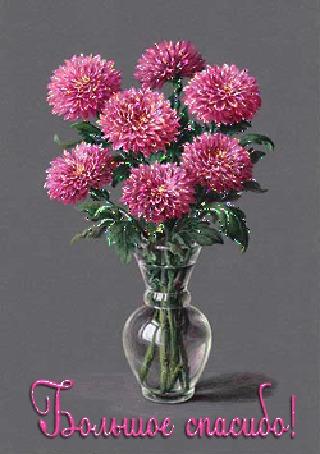 Анимация Красивые цветы георгины (Большое спасибо!)