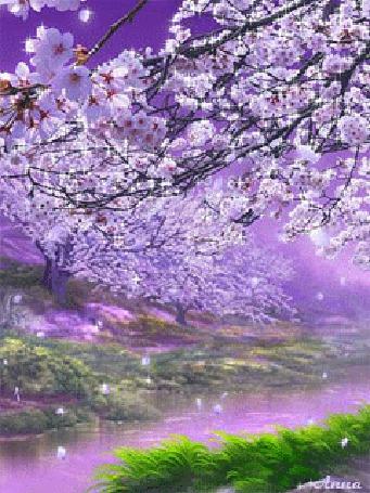 Анимация На берегу речки цветут деревья / Анна/ (© qalina), добавлено: 19.07.2015 12:23