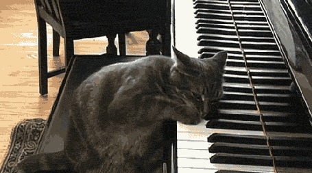 Анимация Кот Бетховен играет на рояле (© phlint), добавлено: 20.07.2015 08:12