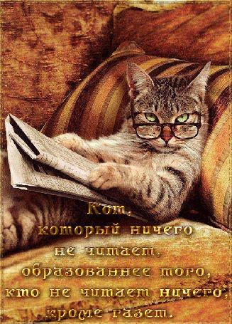 Анимация Кот с зелеными глазами в очках, читает газету (Кот, который ничего не читает, образованнее того, кто не читает ничего, кроме газет)