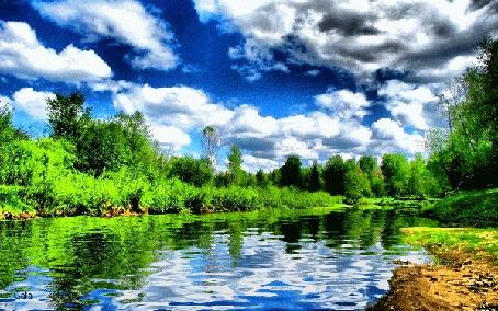Анимация Лес и облака в небе отражаются в водоеме, автор Gala (© Natalika), добавлено: 22.07.2015 08:55