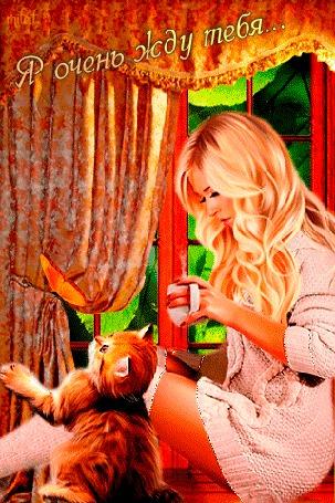 Анимация Девушка с чашкой чая сидит на окне у ног сидит пушистый котенок (Я очень жду тебя)