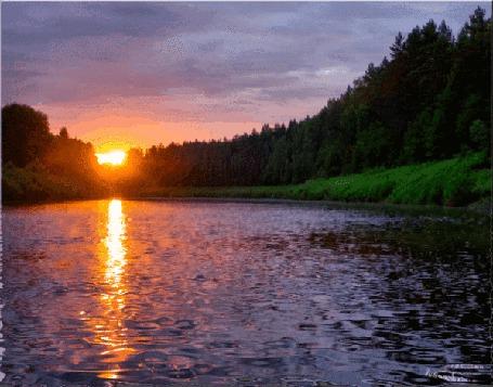 Анимация По берегам реки расположен лес, на фоне заходящее солнце, которое отражается в воде (© Svetlana), добавлено: 22.07.2015 12:08