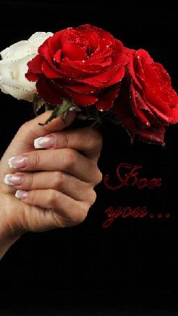 Анимация В руках у девушки три розы (For you./Для тебя.) (© Svetlana), добавлено: 22.07.2015 12:13