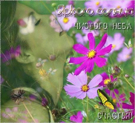 Анимация Девушка вдыхает аромат лета, вокруг цветов космеи порхают бабочки (Яркого солнца, чистого неба, счастья!) автор Ольга П