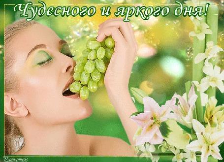 Анимация Девушка с гроздью винограда в руке на фоне белых лилий (Чудесного и яркого дня!) автор Pannamusik (© Natalika), добавлено: 25.07.2015 09:25