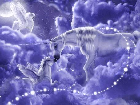 Анимация Фантастические пегасы в небе на облаках (© qalina), добавлено: 26.07.2015 13:10