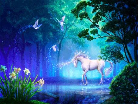 Анимация Красивый белый пегас на фоне леса, речки, цветов (© qalina), добавлено: 26.07.2015 13:17
