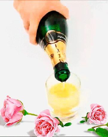 Анимация Мужская рука держит бутылку с шампанским и наливает в бокал, рядом лежат розы на белом фоне, автор Kolibri (© Natalika), добавлено: 28.07.2015 15:37