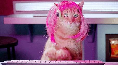 Анимация Кошка в розовом печатает на квлавиатуре (© phlint), добавлено: 30.07.2015 19:20