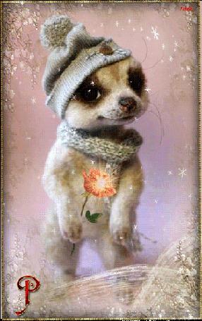 Анимация Котенок в шапочке и в шарфике с розочкой в руках / Роза для вас//Лейла (© qalina), добавлено: 31.07.2015 22:11