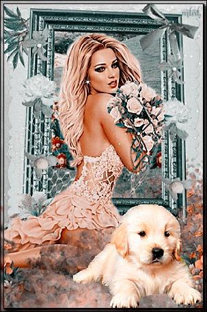 Анимация Девушка с букетом белых роз у ног который сидит щенок золотистого ретривера
