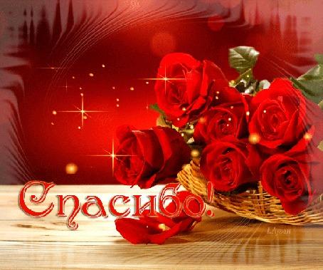 Анимация Красные розы в корзинке/Спасибо/ (© qalina), добавлено: 02.08.2015 21:27