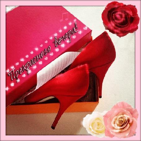 Анимация Красные туфли на шпильках в коробке на фоне роз/Прекрасного вечера/ (© qalina), добавлено: 02.08.2015 21:37